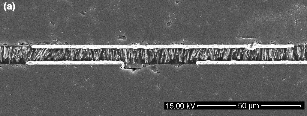 Cross section of bumpless die bonding using nanowire anisotropic conductive film