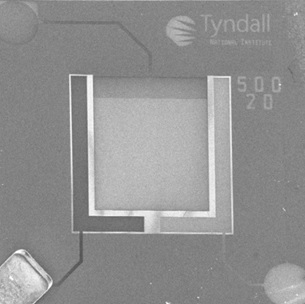 On chip gold microelectrode array with counter and reference